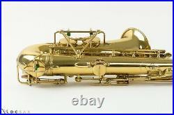 17, xxx Selmer Super Sax Alto Saxophone, Just Serviced, Video