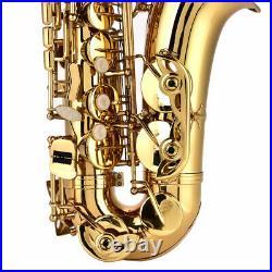 Alto Eb Sax Saxophone Set F# Tone withStorage Case Mouthpiece Accessories Golden