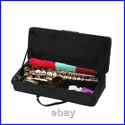 Alto Saxophone Brass Eb Sax Woodwind Instrument with Carry Case Care Kit W6D1