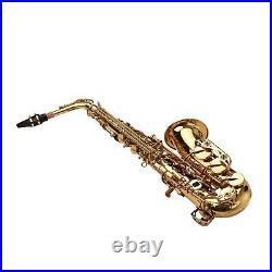 Alto Saxophone Brass Golden Eb Sax Woodwind Instrument with Carry Case Kit U1Q6