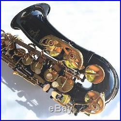 Black Alto Sax STERLING Eb Saxophone Case and Accessories