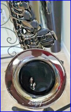 Cannonball Big Bell Stone Series Alto Sax