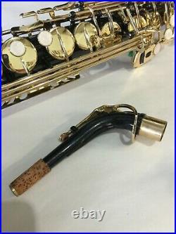 LA Sax Straight Alto Saxophone Unique horn excellent