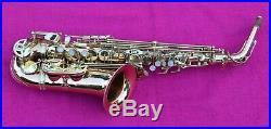 Selmer Liberty LAS501L Alto Sax WORLDWIDESAX bronze-brass body tubing