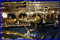 Trevor James 3757A1 Artemis A1 Alto Sax Outfit d6
